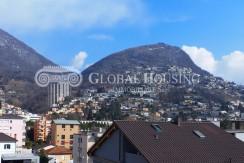 Viganello - Vista 1 - Homegate